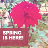 Spring is here, what does this mean?