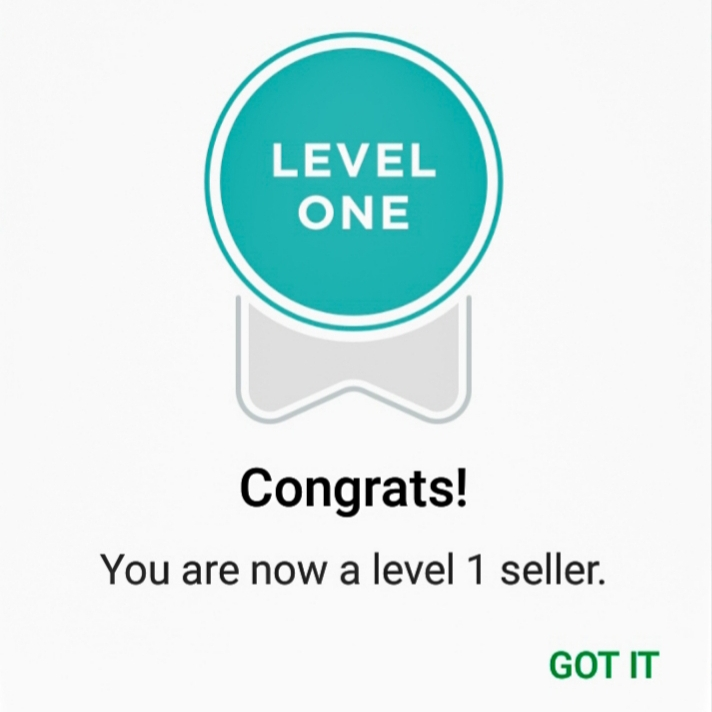 Fiverr level one